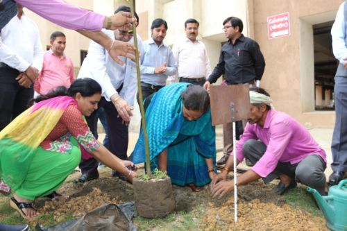 Plantation program by AIIMS Raipur Contractual Employees Association.